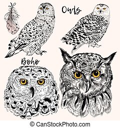 Collection of vector hand drawn owls in detiled style. Hipster fashion design.eps