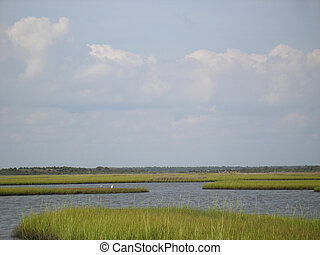 Topsail Island NC - Marsh View with Sea Bird of Topsail...