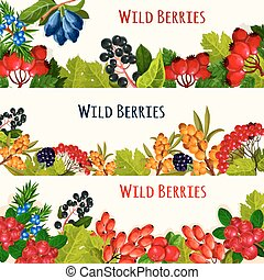 Wild berry banner and fruit border for food design - Wild...