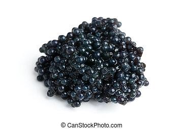 negro,  caviar