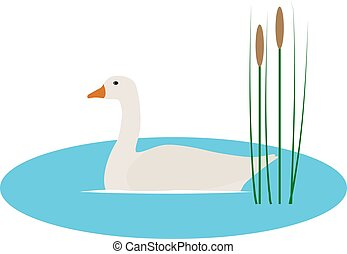 Vector illustration wild goose in pond with reeds - Vector...