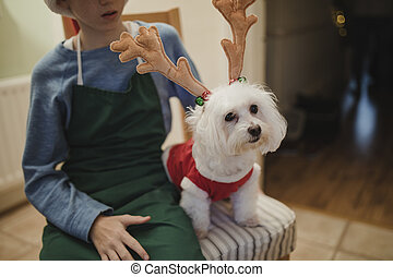 Little Boy And His Dog At Christmas - Little boy is sitting...