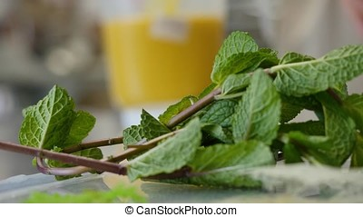 Mint sprigs on a table. Fragrant mint leaves 4K