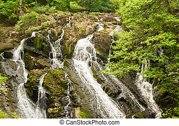 Part of the Swallow Falls, waterfalls in North Wales