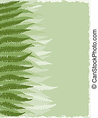 Fern Fronds Background - Shades of Green Fern Fronds...