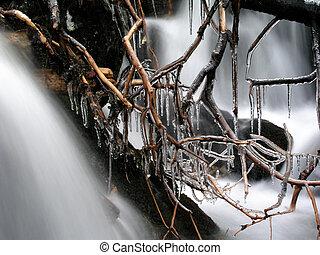 Beautiful Frozen branches closeup in mounatin river