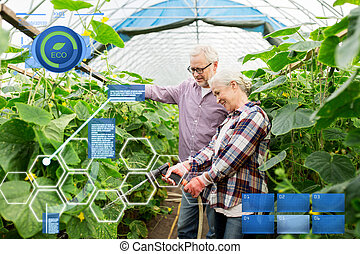 senior couple with garden hose at farm greenhouse - organic...