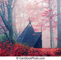 Wigwam in the autumn forest - Indian tepee in autumn forest...