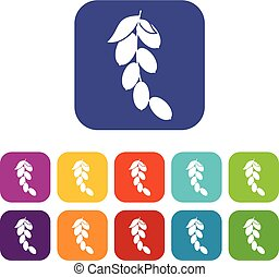 Branch of cornel or dogwood berries icons set flat