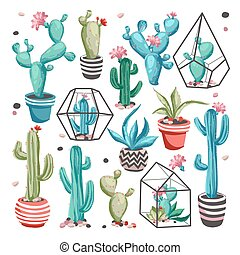 Cacti flower set. - Cacti flower collection. Set of cactus...