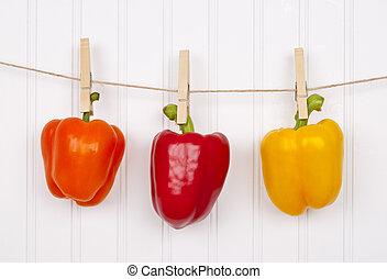 verão, pimentas, pimentas, penduradas, varal