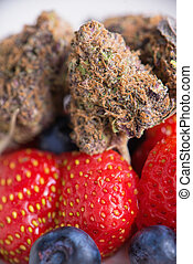 Detail of dried cannabis buds (Rockberry strain) with fresh...