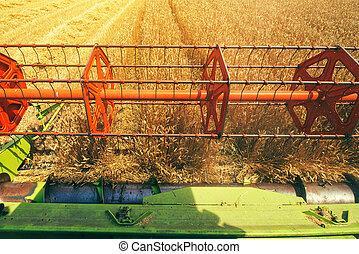 Combine harvester revolving reel from farmers pov - Combine...