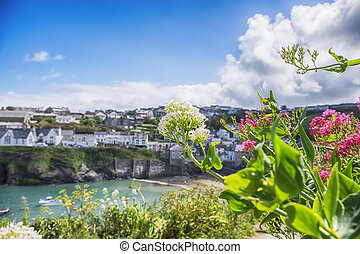 old village Port Isaac, Cornwall - view at old village Port...