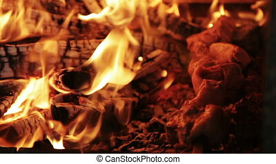 Shish kebab in the fire - Preparation of shish kebab on a...
