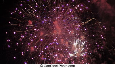 Colorful fireworks in the night sky. Holiday.