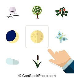 Flat Icon Ecology Set Of Cattail, Lunar, Half Moon And Other...