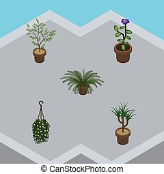 Isometric Houseplant Set Of Blossom, Plant, Fern And Other Vector Objects. Also Includes Plant, Hanging, Flowerpot Elements.