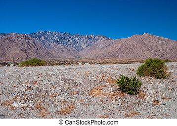 Stark Desert Landscape - The stark desert landscape and the...