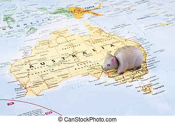 Toy wombat on map of Australia - A concept photo with a toy...