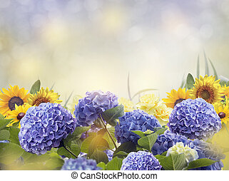 Blue and Yellow Flowers Blossom
