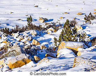 Rocks covered with snow at the wayside in Sichuan, China