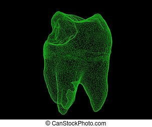 Dental wireframe tooth isolated on black 3D illustration -...