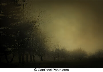 Haunting Mist - A dark and mysterious image of fog over a...