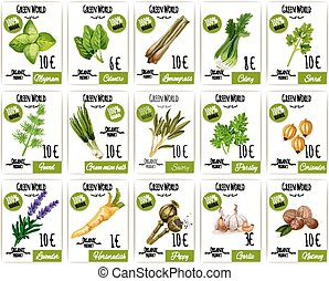 Herb and spices tag or price label set design - Herb and...