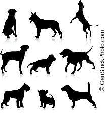 Nine dog illustration - Nine dog vector illustration...
