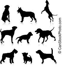 Nine dog illustration - Nine dog vector illustration...