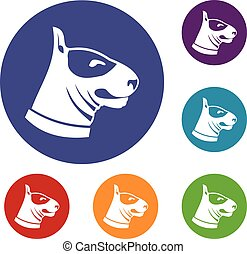 Bull terrier dog icons set in flat circle reb, blue and...