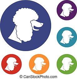 Poodle dog icons set