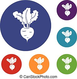 Fresh beetroot icons set in flat circle reb, blue and green...