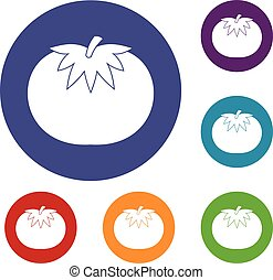 Tomato icons set in flat circle reb, blue and green color...