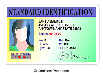 female standard identification card - Illustration of female...