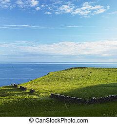 seascape, County Antrim, Northern Ireland