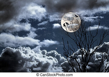 Full moon - Photo composition with full moon, part of a...