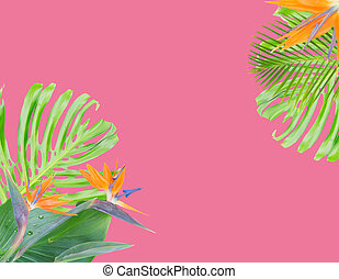 orange hibiscus flower - tropical flowers and leaves -...