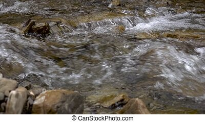 Pure stream of mountain river among stony coasts. Time lapse