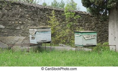 Beehives in a meadow in monastery - Antique georgian...