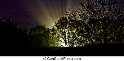 Surreal sci-fi light burst - Surreal and grainy sci-fi...