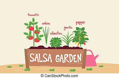 Salsa Garden Planter Illustration - Illustration of a Salsa...