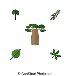 Flat Icon Ecology Set Of Baobab, Evergreen, Linden And Other...