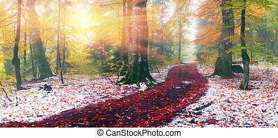 first snow in the autumn - Autumn in Transcarpathia...