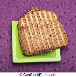 Toasted Cheese Sandwich on a Vibrant Background.