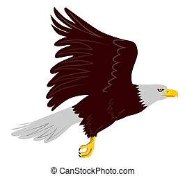 bald eagle flying side view - illustration of an eagle...