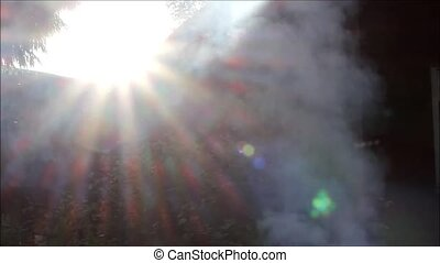 White smoke from the fire, insects and evening sun. - White...