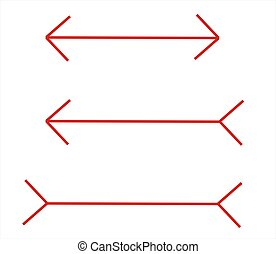 optical illusion - these lines have the same size but it...