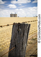 Barbed Wire - Rusty barbed wire fence with harvested wheat...